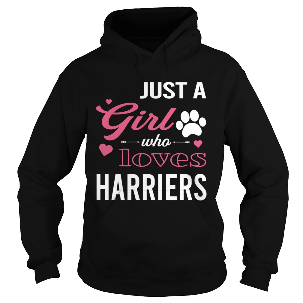 Just A Girl Who Loves HARRIERS Dog Pet  Hoodie