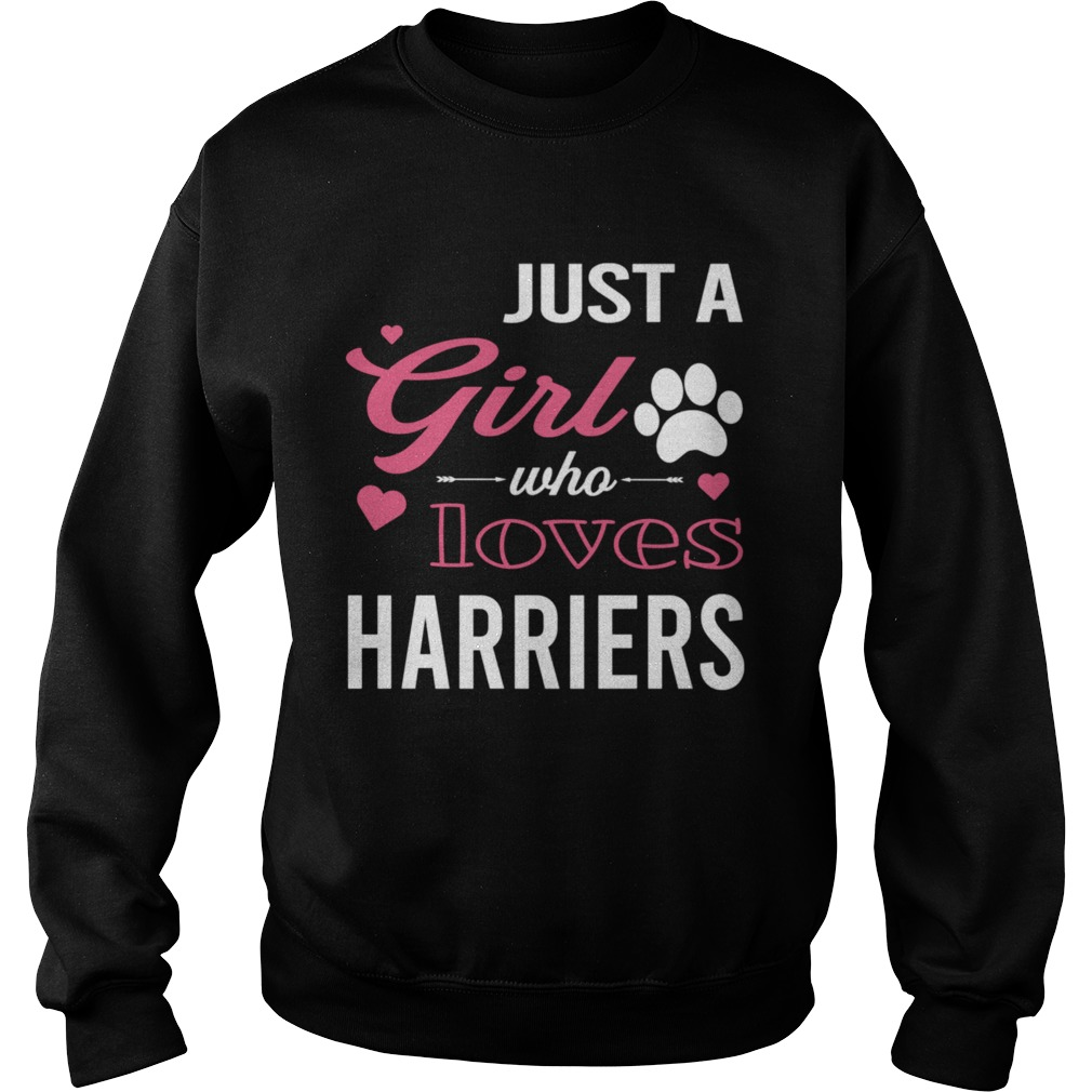 Just A Girl Who Loves HARRIERS Dog Pet  Sweatshirt